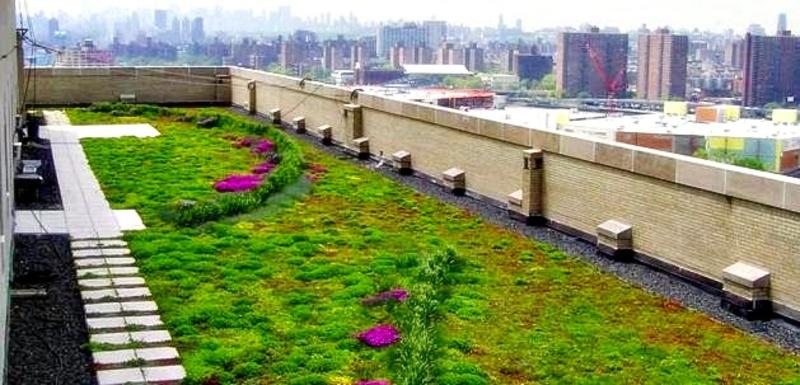 Terrazas ajardinadas impersil impermeabilizaciones y for Terrazas ajardinadas
