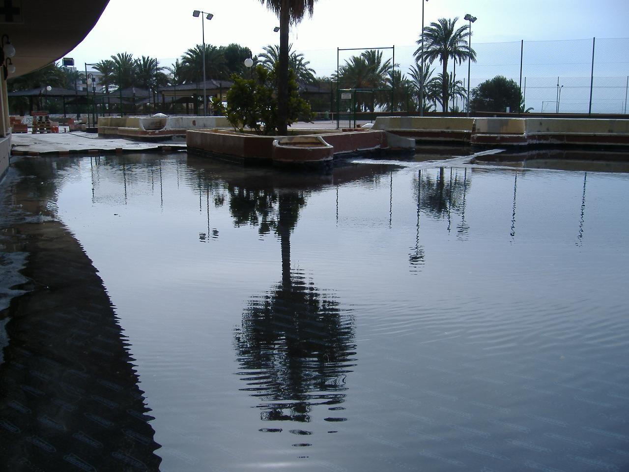 impermeabilizacion de terraza ajardinada,prueba de estanqueidad y pavimentado de loseta de hormigon